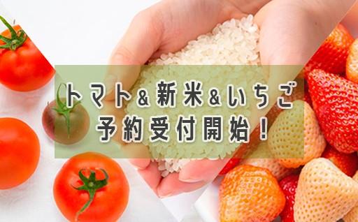 トマト&新米&いちご 予約受付開始!