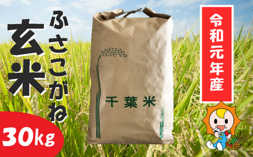★令和元年産ふさこがね玄米★受付開始!