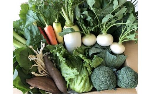 旨い野菜をお届けします。