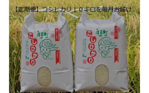 千葉県白子町産 コシヒカリの定期便