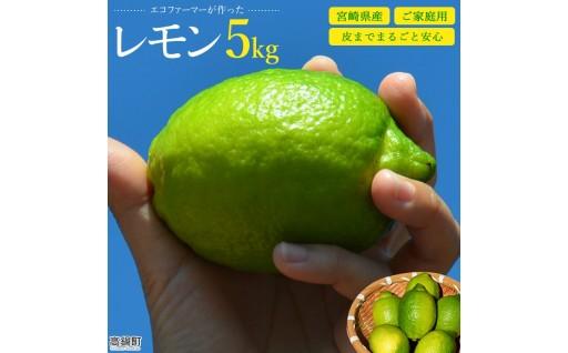 予約開始!エコファーマーが作った宮崎県産レモン