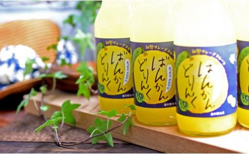 新商品!柑橘「河内ばんかん」果汁で作ったドリンク