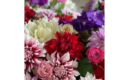 【12ヵ月の定期便!】  東北地方の季節の花束