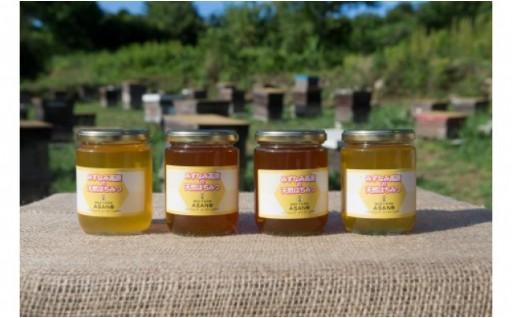 天然無添加!熟成ハチミツ3種類セット
