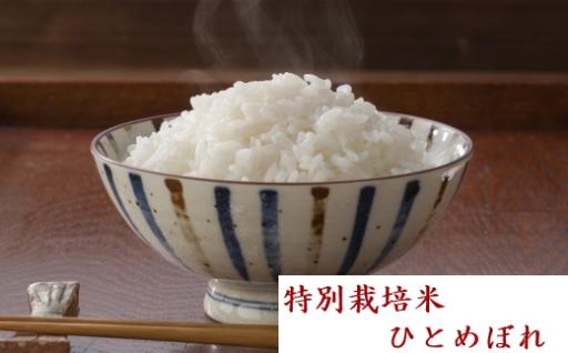 宮城の大地が育んだ特別栽培米「ひとめぼれ」!