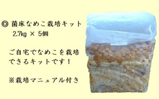 小野寺農園の菌床なめこ栽培キット5個