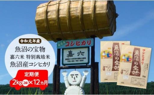 【新米】特別栽培米魚沼産コシヒカリ「魚沼の宝物」
