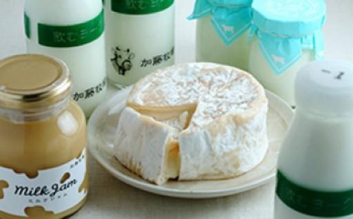 加藤牧場乳製品とカマンベール、ミルクジャムセット