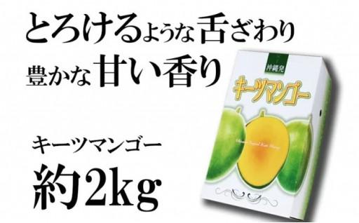 【2020年発送】キーツマンゴー 約2kg
