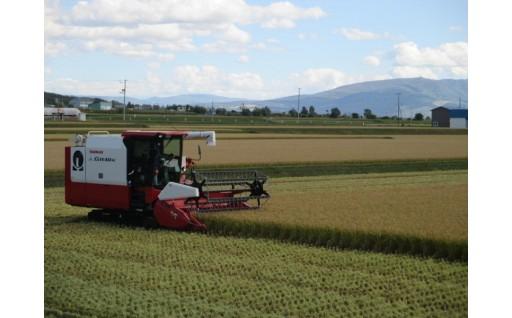 お米の収穫が始まりました!【北海道秩父別町】