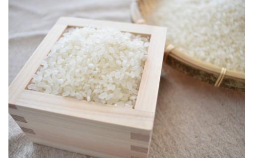 \新米発送します/鉾田の美味しいお米