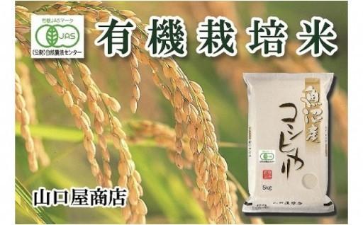 【厳選☆十日町育ち】有機栽培米 魚沼産コシヒカリ