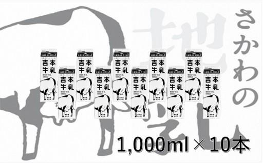 人気急上昇中!さかわの地乳(牛乳)1L×10本