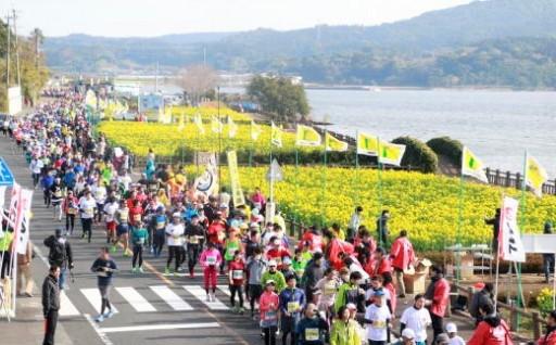 菜の花が咲き誇るマラソンコースを駆け抜けよう!