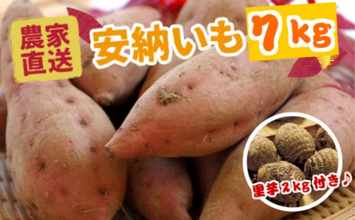 農家直送の贈り物 安納芋7kg(里芋2kg付き)
