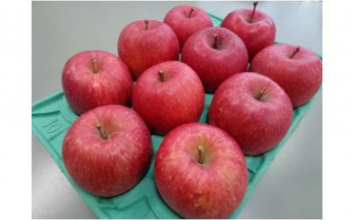 おいしい旬のりんご3kgをお届けします♪