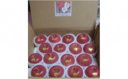 【先行受付】超完熟りんご弘前産ふじ16個お届け♪