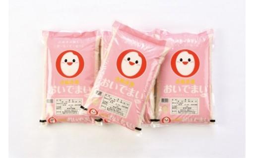 香川県が開発・育成したおいしいお米「おいでまい」