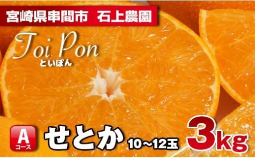 【数量限定】高級柑橘せとか(Toipon)3kg