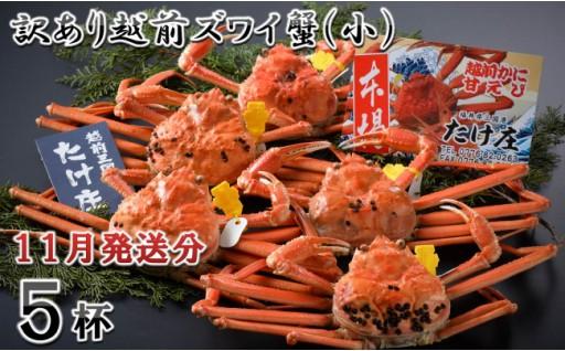 【11月発送分】訳あり越前ズワイ蟹(小) 5杯