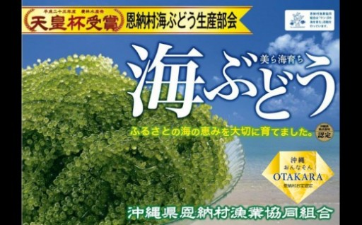 <恩納村産> 生海ぶどう 500g(タレ付)