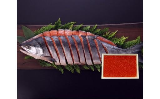 秋の味覚!鮭、いくらが勢ぞろい!