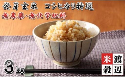 【発芽玄米】 無農薬コシヒカリ特選 真空パック