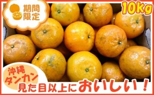 2019年発送【国頭村産】たんかん(10kg)