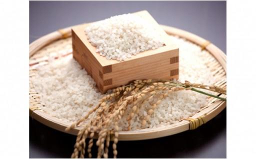 【新米食べ比べ】おいしいお米3種類セット 各5㎏