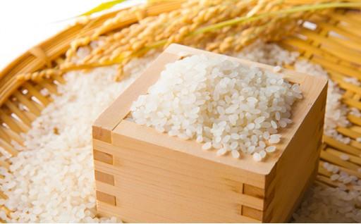 【令和元年産新米】香川の米 おいでまい10kg