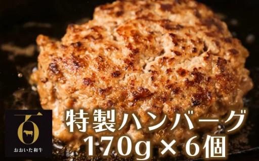 おおいた和牛特製ハンバーグ170g×6個