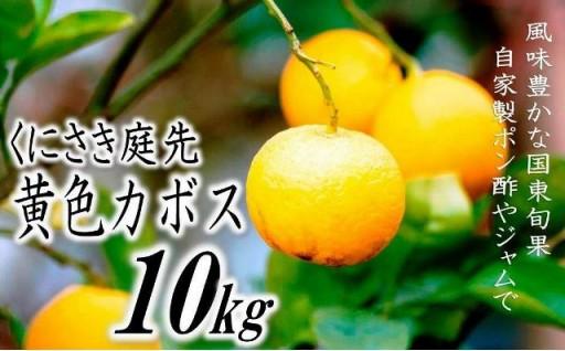 くにさきの庭先黄色かぼす10kg