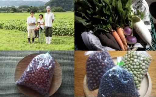 大江町産 旬の根菜と乾燥豆のセット