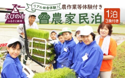 農作業等体験付き農家民泊(1泊3食付き)