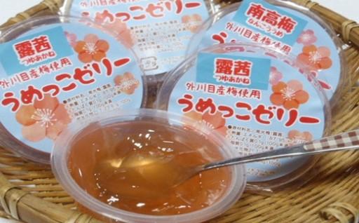 【添加物不使用】南高梅のジュース・ゼリーセット