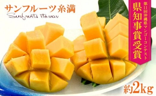 【2020年発送】サンフルーツ糸満マンゴー2kg