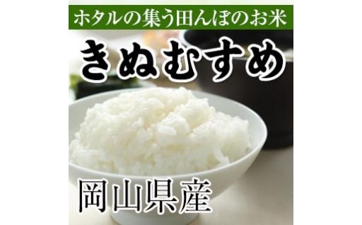 新米きぬむすめの白米・無洗米の定期便が人気です!