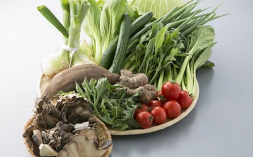 実りの秋!野菜ソムリエ監修の野菜セットをお届け!
