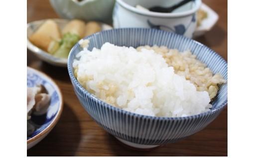 お米は生鮮食品。早めにお召し上がりください