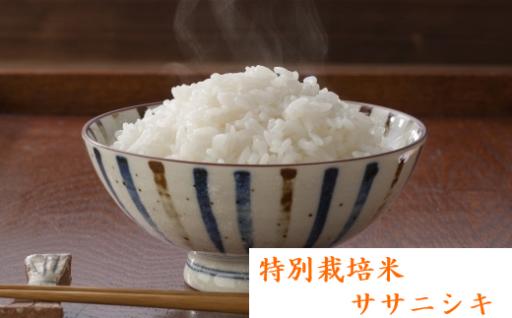 宮城の大地が育んだ特別栽培米「ササニシキ」!