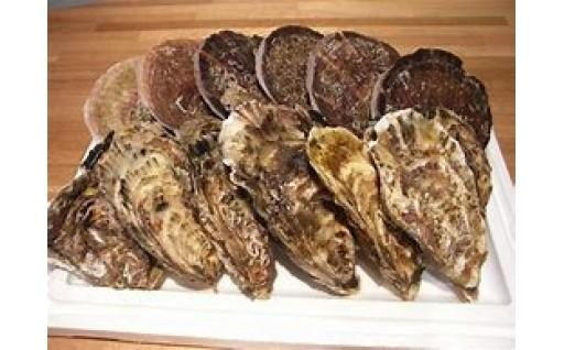 【岩手県大槌町】三陸の特大ホタテと牡蠣のセット