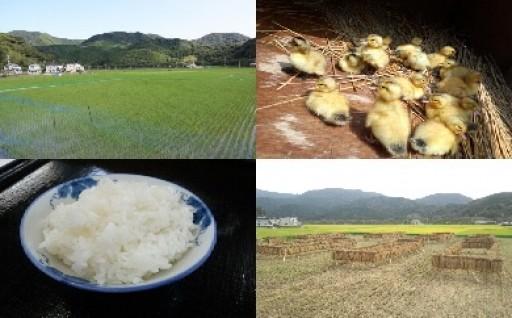 【受付開始】合鴨農法米(うるち米)再登場!!