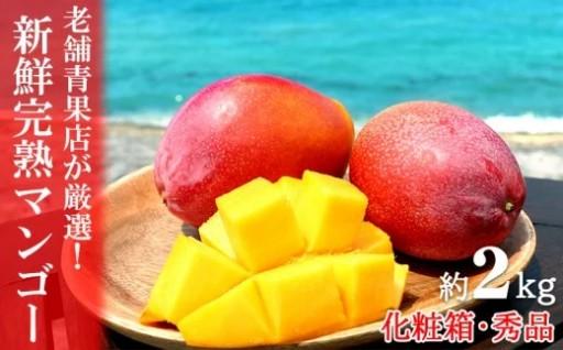 【2020年発送】新鮮完熟マンゴー2kg<秀品>