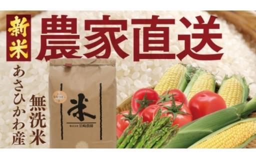 【定期便】新米ななつぼしと季節の野菜をお届け!