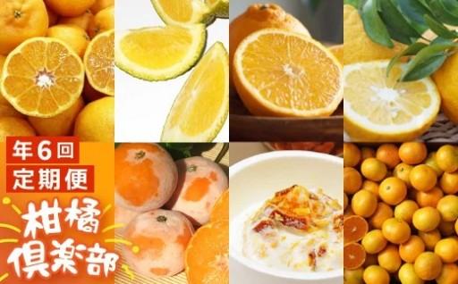 旬の有機柑橘フルーツや加工品を全6回お届け♪
