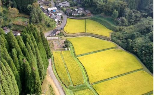 彼岸花咲く「脇戸地区」景観保全へ繋がる地域活性米