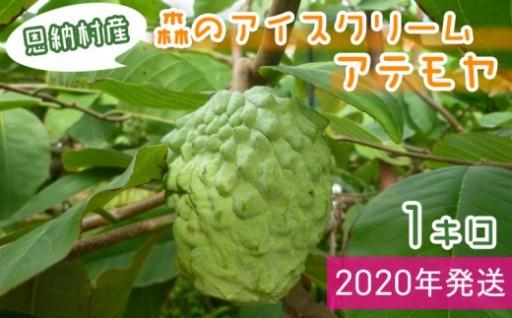 【2020年発送】恩納村産アテモヤ 1kg