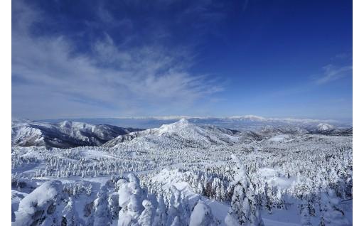 志賀高原スキーリフト券好評受付中です