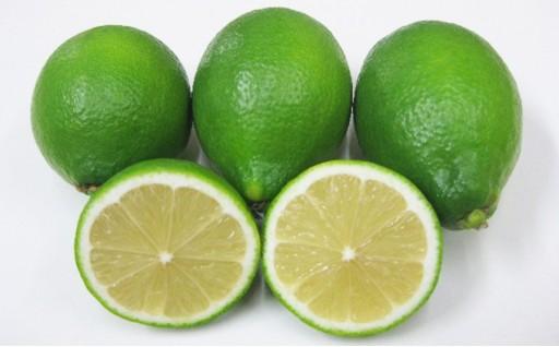 【締め切り間近!】小豆島ハウスレモン 2kg