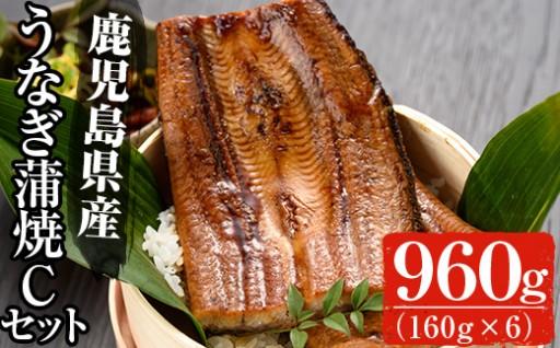 うなぎ蒲焼約160g×6尾,タレ・山椒付!!